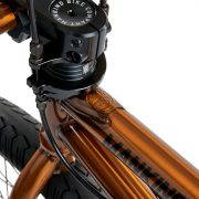 Mankind International 20 Bike trans gold_011
