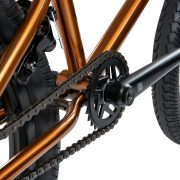 Mankind International 20 Bike trans gold_042